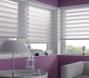 main-zebra-transition-blinds-2